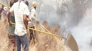 Kenyan National Park Fire Extinguished