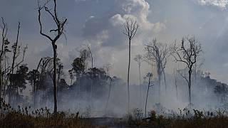 FILE: an area smolders in the Alvorada da Amazonia region in Novo Progresso, Para state, Brazil, Aug. 25, 2019.
