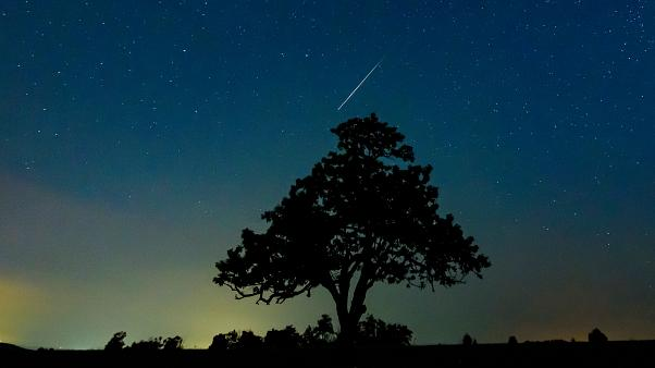 A meteorite over Hungary during the 2019 Perseid meteor shower