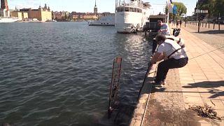 Búvárok tisztítják a stockholmi vizeket