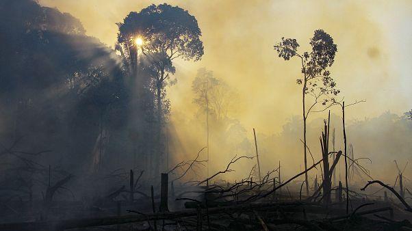 Zona incendiada na Amazónia