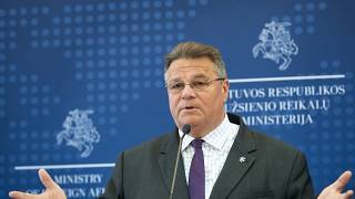 Linas Linkevicius told Euronews that Europe should consider sanctions against Belarus.