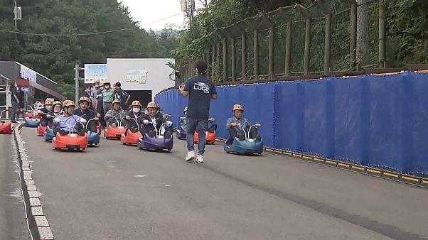 Corée du Sud : une piste de luge géante... sur une route fermée