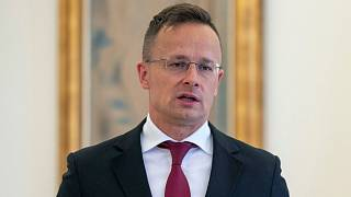 Hungarian Foreign Minister Peter Szijjarto issued the call on Thursday in a Facebook post.
