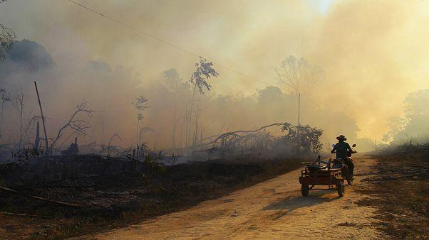 Сезон пожаров в Амазонии: рекордное число очагов возгорания