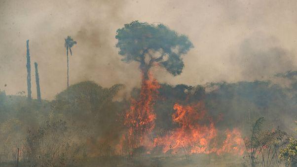 Több helyen ég az esőerdő Brazíliában