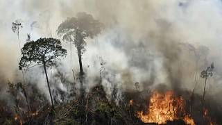 Incêndio na Amazónia