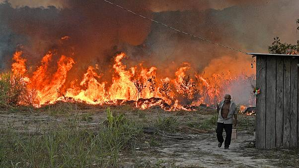 An elderly farmer who set fire to an area of the rainforest around his property walks away as the fire approaches his house in an area of Amazon rainforest, in Para state