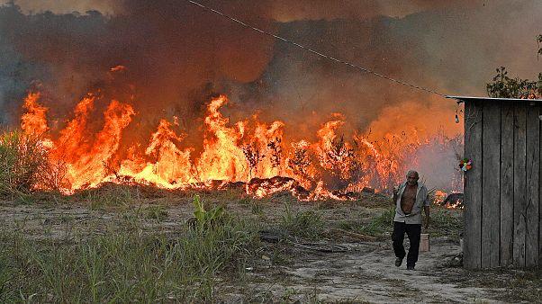 FOTO L'Amazzonia brucia: da maggio più di 260 incendi nel polmone verde del pianeta