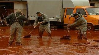 Desastre químico na Hungria