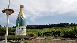 Champagne houses estimates that the COVID-19 crisis will account for a loss of about 100 million of bottles in sales