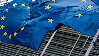 Avrupa Birliği bayrakları