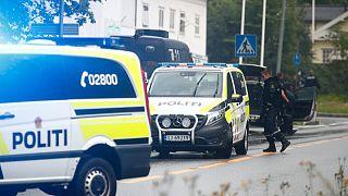 Norveç polisi