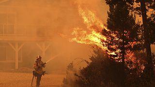 Waldbrände in Kalifornien - Tausende fliehen vor den Flammen