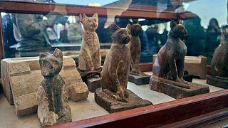 Antik Mısır'da mumyalanan 3 hayvan incelendi