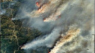Vista de los incendios por satélite este 20 de agosto
