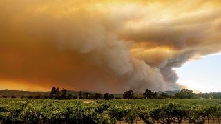 Waldfeuer in Kalifornien brennen weiter