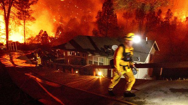 Már több mint egymillió hektár égett le a kaliforniai erdőtüzek során