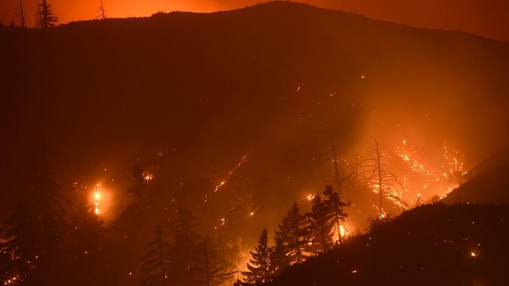 Kaliforniya eyaletinde çıkan yangınlar kontrol altına alınamıyor, 240 bin kişi tahliye edildi