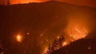 Kaliforniya eyaletinde çıkan yangınlar kontrol altına alınamıyor