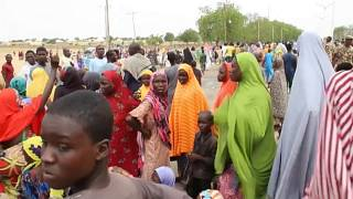Amnesty: 1100 killed in northern Nigeria