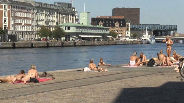 Kopenhagen: Urlaub am Hafen