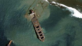 Maurice : Le Wakashio met les mangroves et récifs coralliens en danger