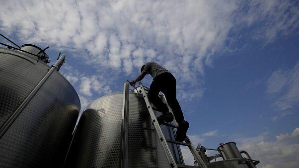 Para deshacerse del excedente de vino, Italia lo convierte en gel desinfectante
