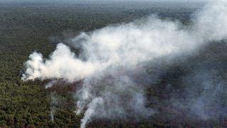 حرائق في غابات الأمازون