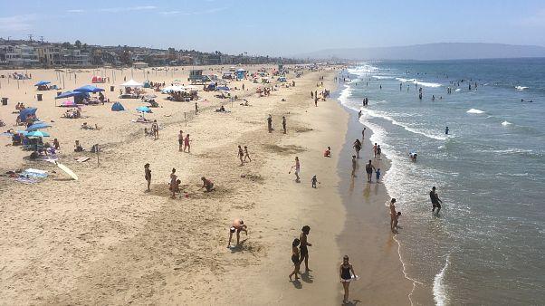أحد شواطئ كاليفورنيا
