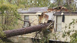ABD'de kasırga: 5 kişi ağaçların evlerinin üzerine devrilmesi sonucu öldü