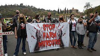 Manifestation des fermiers blancs d'Afrique du Sud