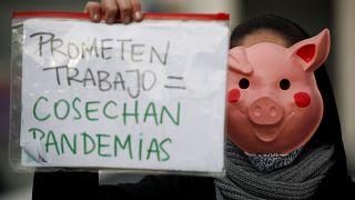 """Una joven animalista protesta mientras lleva un cartel con el eslogan """"Prometen trabajo = Cosechan pandemia"""""""