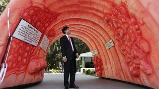Kolon kanserine dikkat çekmek için ABD'de kurulan bağırsak maketi