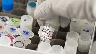 Sul vaccino per il Covid l'industria farmaceutica mette le mani avanti