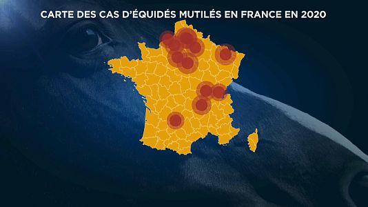 Grafica Euronews