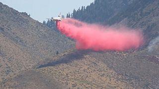 هواپیمای آتش نشانی