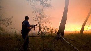 Тушение лесного пожара в России, 2010