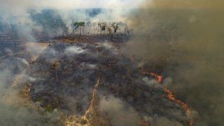 من حرائق غابات الأمازون
