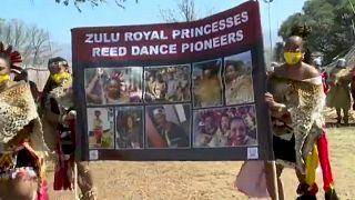 Afrique du Sud : La danse des roseaux des Zoulous fortement réduite