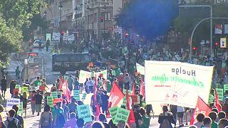 Manifestación de la 'Marea verde' en Madrid