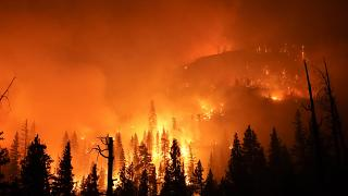 Bozóttüzek Kaliforniában
