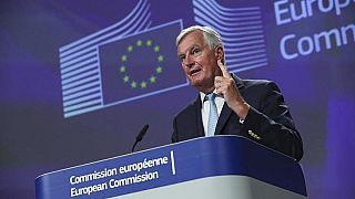 كبير مفاوضي الاتحاد الأوروبي ميشال بارنييه