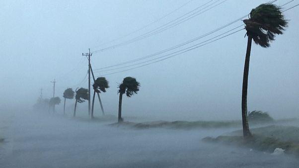 """Mit Vollgas durch den Hurrikan: """"Haishen"""" wütet in Japan"""