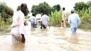 Northern Cameroon Under Water