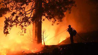 Kaliforniya eyaletinde orman yangını