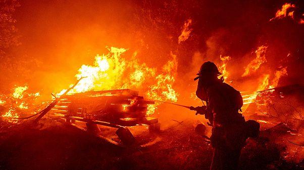 Katasztrofális a helyzet Kaliforniában, már kétmillió hold erdő leégett