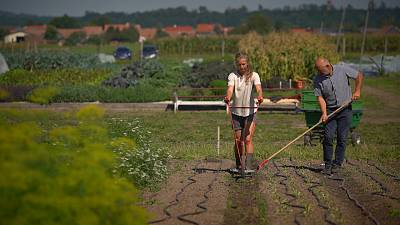 On a mission to save our soils - the EU's plan to rebuild the land