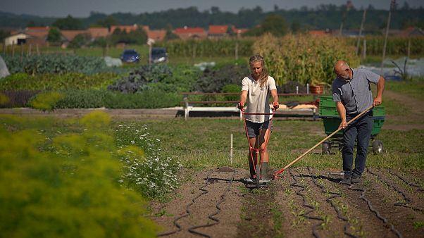 La UE busca restaurar el 70% de las tierras agrícolas para 2030