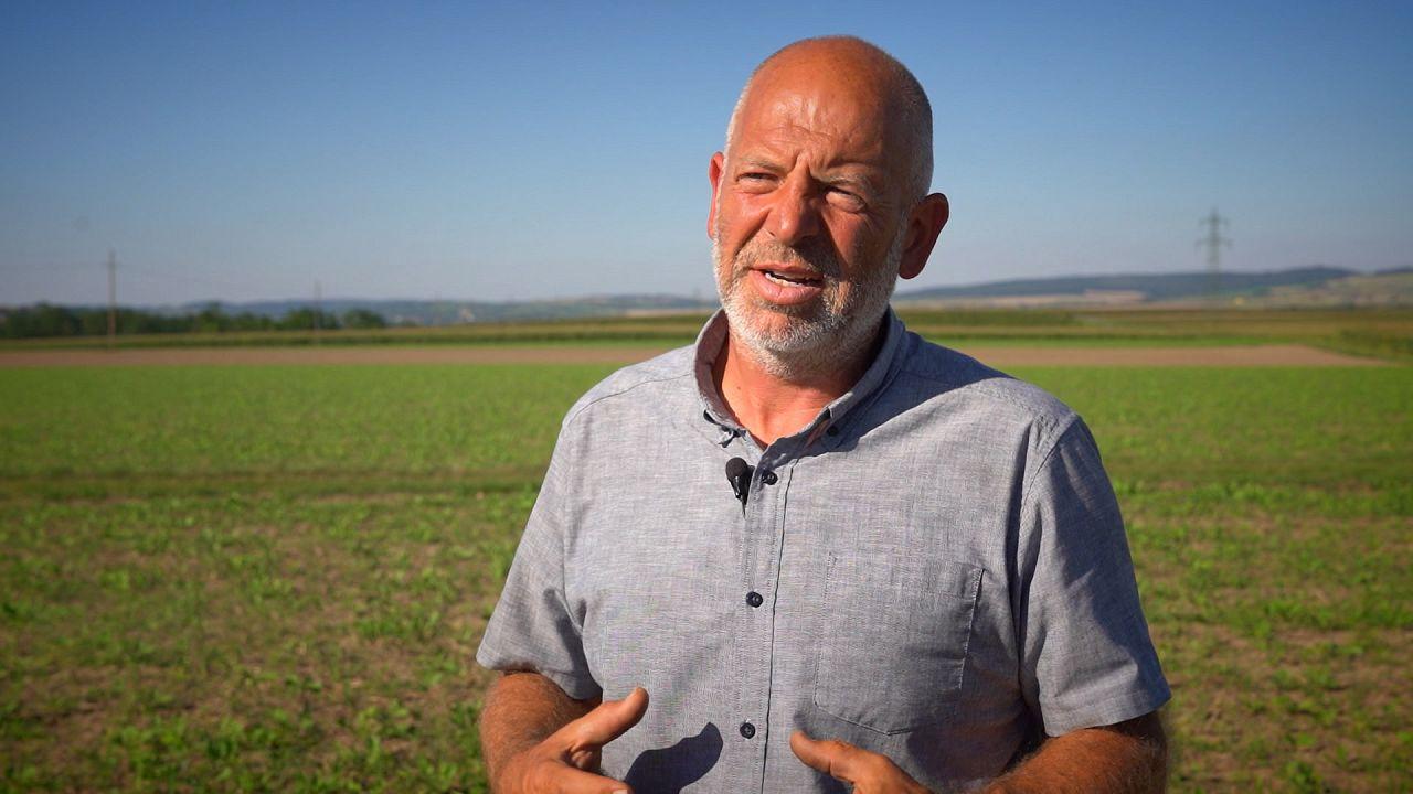 """Alla scoperta dei """"cover crops"""": colture che tengono in forma il suolo"""